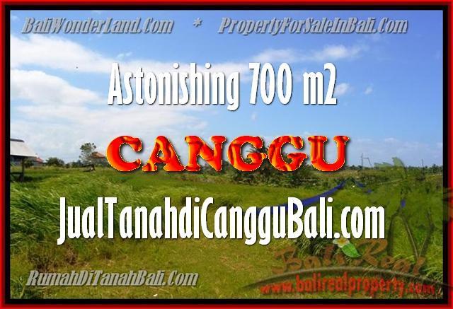 INVESTASI PROPERTI, DIJUAL MURAH TANAH di CANGGU BALI TJCG155