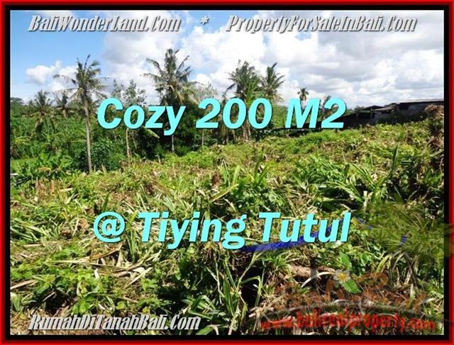 TANAH MURAH JUAL CANGGU 2 Are View sawah dan kebun pandan