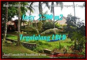 INVESTASI PROPERTI, TANAH DIJUAL di UBUD TJUB462