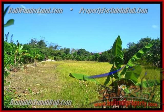 TANAH MURAH JUAL di JIMBARAN BALI 15 Are Lingkungan Perumahan dan Villa