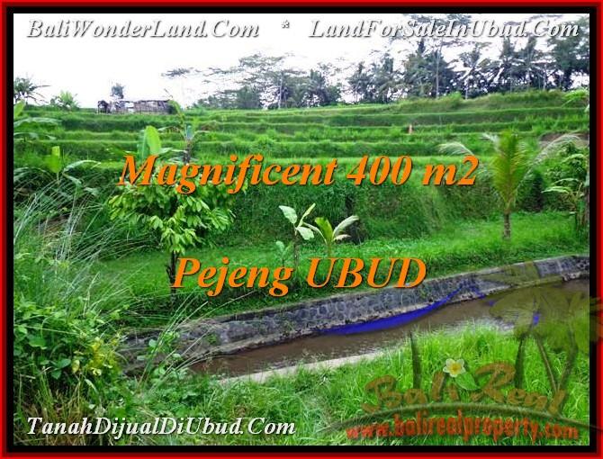 DIJUAL TANAH MURAH di UBUD Untuk INVESTASI TJUB483