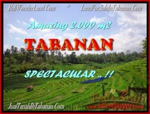 INVESTASI PROPERTI, DIJUAL TANAH di TABANAN BALI TJTB172
