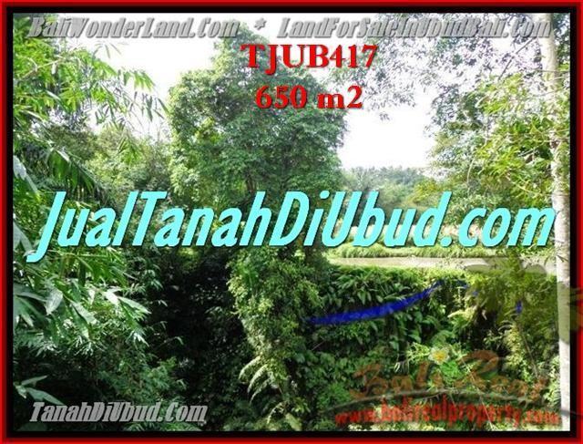 INVESTASI PROPERTY, DIJUAL TANAH MURAH di UBUD TJUB417