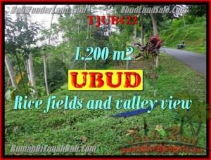 TANAH MURAH di UBUD 1,200 m2 di Ubud Tegalalang