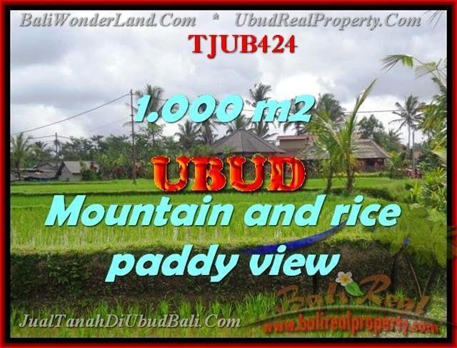 TANAH JUAL MURAH UBUD BALI 10 Are view sawah gunung dan tebing