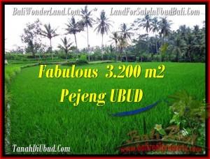 DIJUAL TANAH MURAH di UBUD Untuk INVESTASI TJUB484