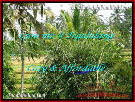 JUAL MURAH TANAH di UBUD Untuk INVESTASI TJUB489