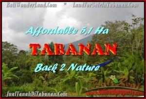 TANAH JUAL MURAH  TABANAN 511 Are View gunung dan laut singaraja