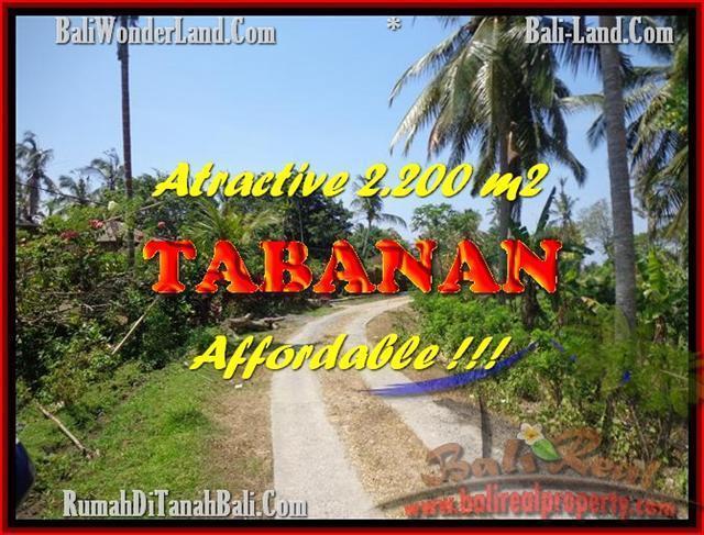 JUAL TANAH MURAH di TABANAN BALI Untuk INVESTASI TJTB169