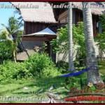 JUAL TANAH di TABANAN 70 Are View Laut dan Kebun