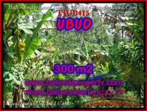 JUAL MURAH TANAH di UBUD 300 m2  View kebun alami