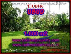 JUAL MURAH TANAH di UBUD Untuk INVESTASI TJUB416
