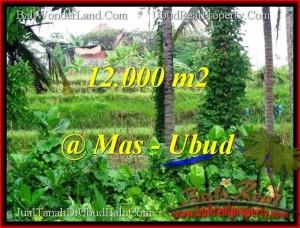 TANAH MURAH di UBUD BALI 120 Are di Sentral Ubud