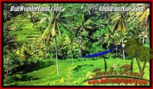 JUAL MURAH TANAH di UBUD 2,500 m2 di Ubud Tegalalang