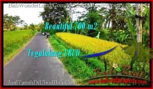 TANAH DIJUAL MURAH di UBUD BALI Untuk INVESTASI TJUB497
