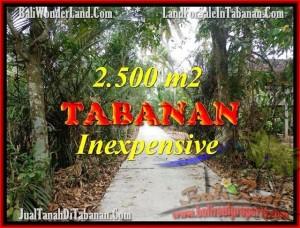 TANAH DIJUAL MURAH di TABANAN 25 Are di Tabanan Selemadeg