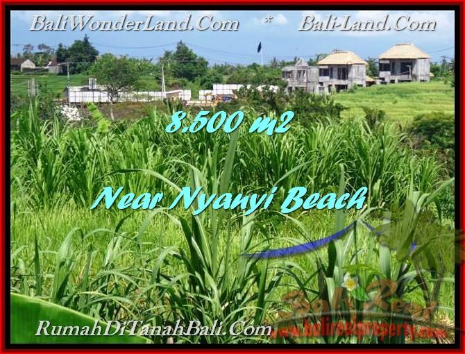 JUAL TANAH di TABANAN 85 Are View sawah dan Sungai