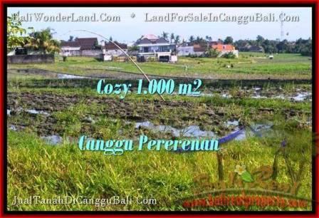 JUAL MURAH TANAH di CANGGU 10 Are View sawah link villa