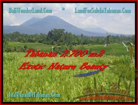 TANAH JUAL MURAH TABANAN 2.700 m2 Sawah, Gunung, Sungai dan Kota Denpasar