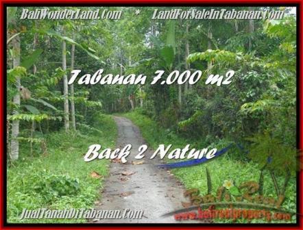 DIJUAL TANAH di TABANAN BALI Untuk INVESTASI TJTB176