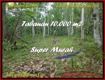 TANAH MURAH di TABANAN BALI 10.000 m2 di Tabanan Penebel