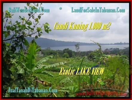 TANAH DIJUAL MURAH di TABANAN 10 Are di Tabanan Bedugul