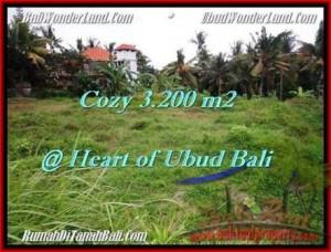JUAL TANAH di UBUD BALI 3,200 m2  Dekat Monkey forest