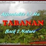 TANAH DIJUAL MURAH di TABANAN Untuk INVESTASI TJTB166