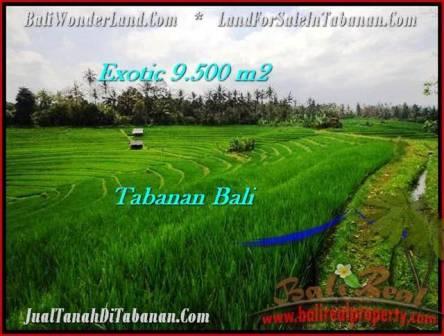 TANAH JUAL MURAH TABANAN 95 Are View Gunung dan sawah