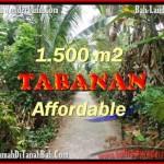 TANAH DIJUAL MURAH di TABANAN 3,000 m2 di Tabanan Selemadeg