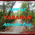 TANAH MURAH JUAL di TABANAN BALI 80 Are View kebun