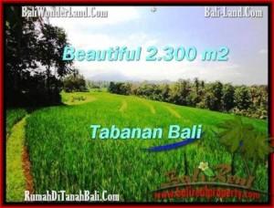 JUAL TANAH MURAH di TABANAN BALI 23 Are di Tabanan Selemadeg