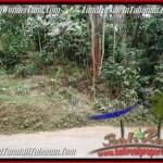 TANAH MURAH JUAL di TABANAN BALI 36 Are View Kebun