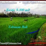 JUAL TANAH MURAH di TABANAN BALI 9,500 m2 di Tabanan Selemadeg