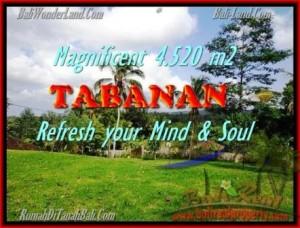 TANAH MURAH di TABANAN BALI Untuk INVESTASI TJTB154