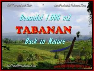 TANAH MURAH di TABANAN BALI Untuk INVESTASI TJTB155