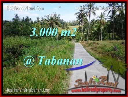 JUAL TANAH MURAH di TABANAN BALI Untuk INVESTASI TJTB205
