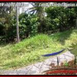 JUAL TANAH MURAH di TABANAN 20 Are View Kebun