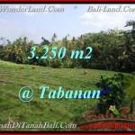 DIJUAL TANAH di TABANAN 32.5 Are di Tabanan Selemadeg