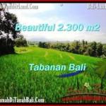 DIJUAL TANAH di TABANAN BALI TJTB209