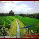 JUAL TANAH di TABANAN 2,300 m2 View Gunung dan sawah