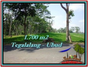 DIJUAL TANAH di UBUD BALI Untuk INVESTASI TJUB518