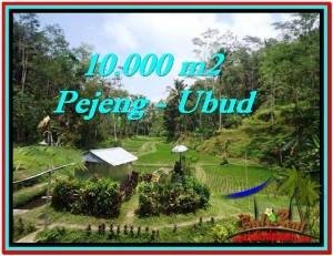TANAH JUAL MURAH  UBUD 10,000 m2  View Sawah, Kolam, Pancoran