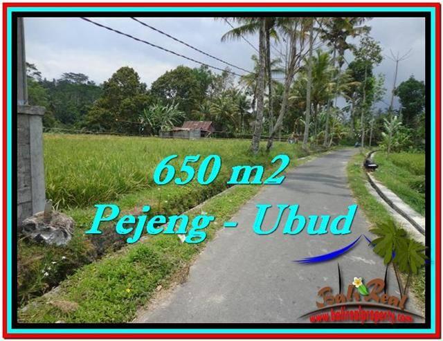 JUAL TANAH MURAH di UBUD 6.5 Are di Ubud Tampak Siring