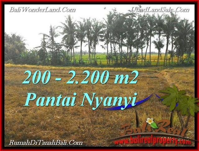 TANAH di TABANAN BALI DIJUAL MURAH 2,200 m2 View sawah