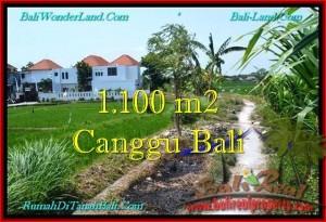 TANAH MURAH di CANGGU BALI DIJUAL 1,100 m2 di Canggu Brawa