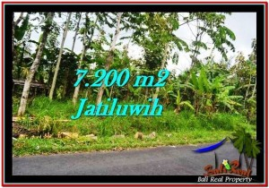 INVESTASI PROPERTY, JUAL TANAH MURAH di TABANAN BALI TJTB226