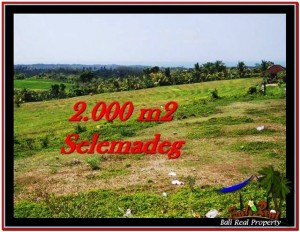 TANAH JUAL MURAH TABANAN 2,000 m2 View sawah, laut, Kota Denpasar