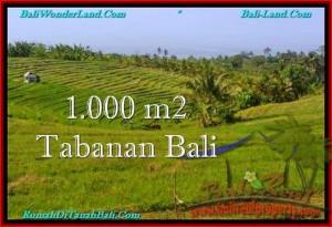 JUAL TANAH di TABANAN 10 Are View Laut dan sawah