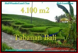 JUAL TANAH di TABANAN 41 Are View sawah dan Kebun